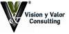 Visión y Valor Consulting