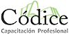 CDICE CAPACITACIN PROFESIONAL