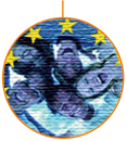 Servicio Voluntario Europeo