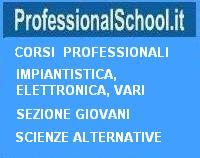 Professional School