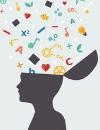 ¿Cómo sacarle partido a la neurociencia en la orientación? Descúbrelo en un seminario de la UB