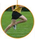 Grado en Ciencias de la Actividad Física y del Deporte