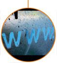 Webgardener